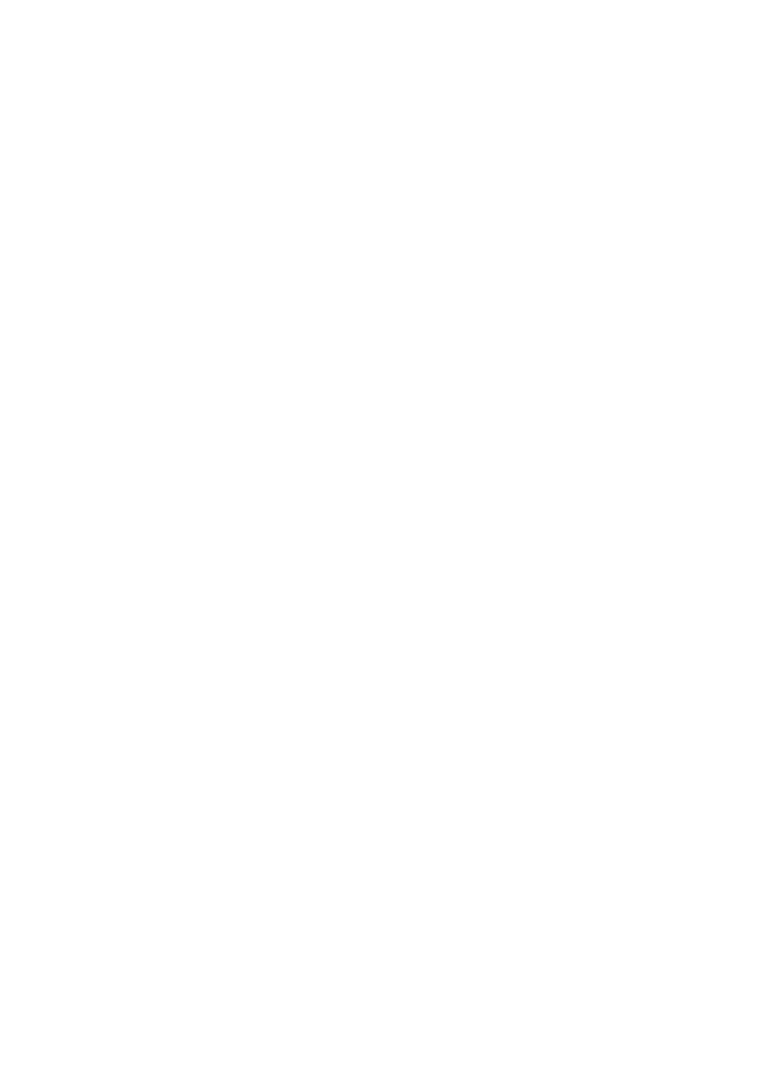 Ricciarini Collection